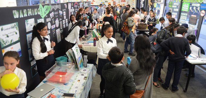 2019 Year 6 Exhibition
